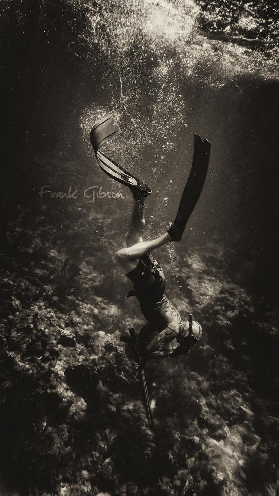 ©Frank Gibson