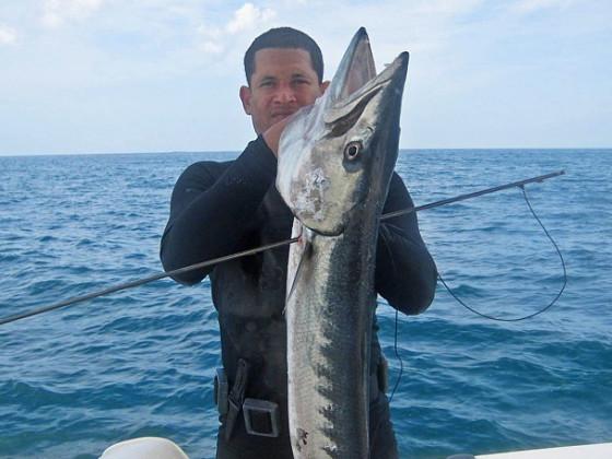 2008.02.24 - Sergio Barracuda