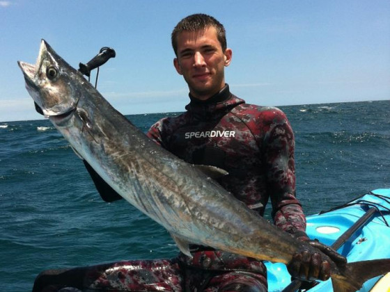Kingfish with kayak