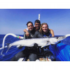 Bali Spearfishing Barracuda