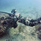 Speardiver Reef 1.5mm Wetsuit