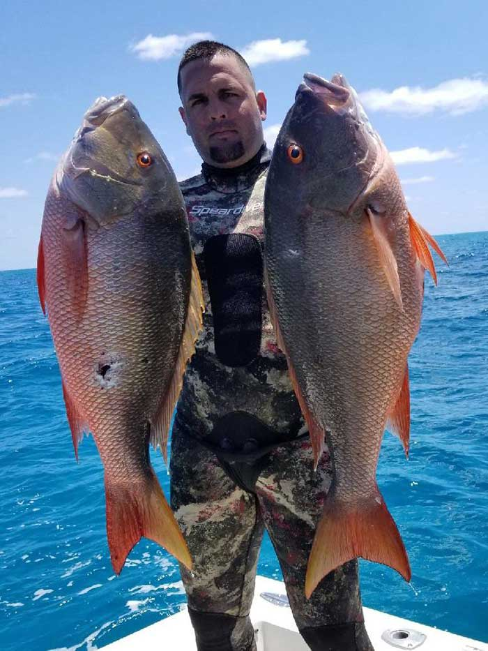Speardiver Reef 3mm Spearfishing Wetsuit Mutton Snappers