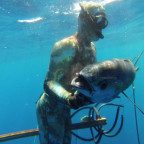 First Yellowfin