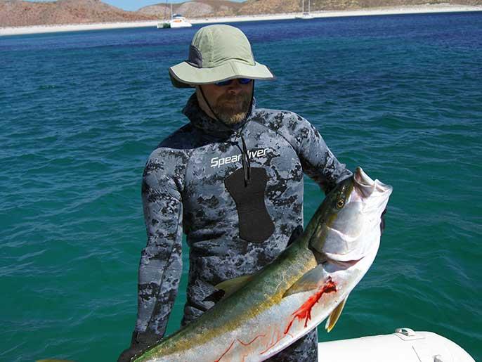 speardiver-sombra-spearfishing-wetsuit-yellowtail.jpg